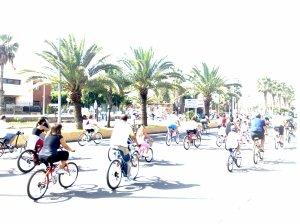 Día de la bicicleta 2008
